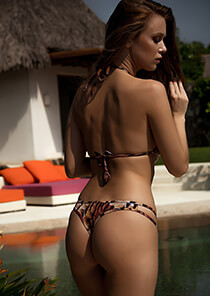 Feather Print - Hipster Thong 333-1053-23000