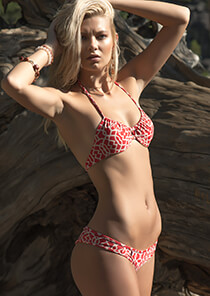 Surf Bikini Bottom in Red Cream Honu Print