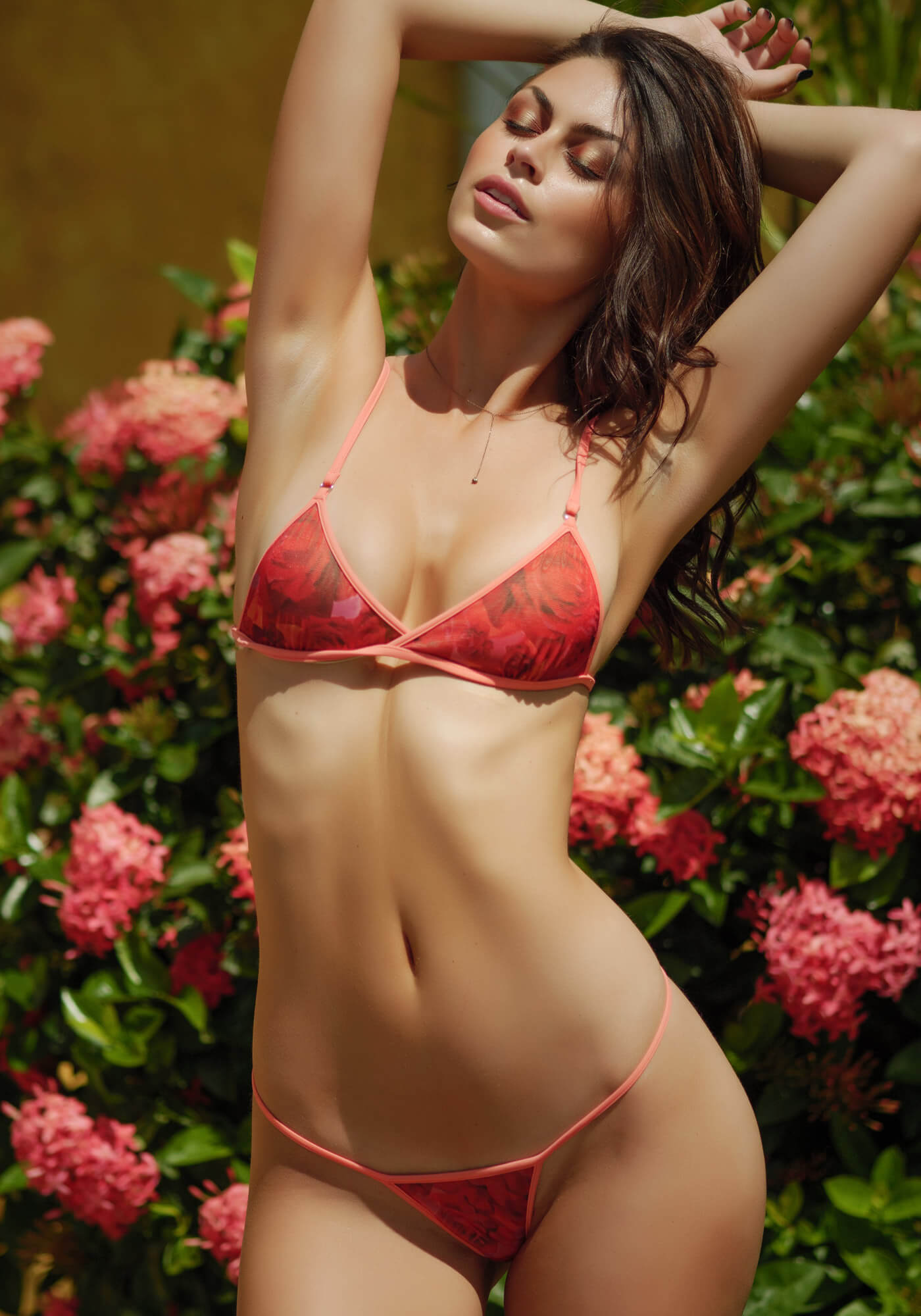 Classic Bralette in Red Rose Mesh with Flamingo 120-5280-10400