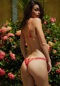 Hipster Thong Panty in Red Rose with Flamingo 120-5280-13000