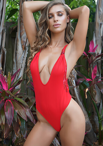 Tulum Plunge One Piece Ginger with Rose Mesh 119-1730-62000